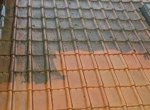Aquastra - reinigen/ontmossen van daken